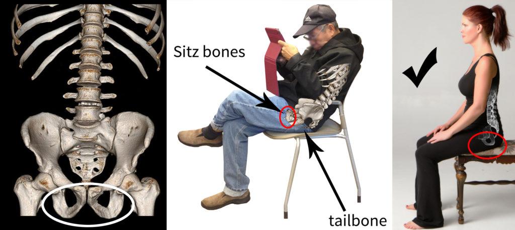 sitz-bones-sitting